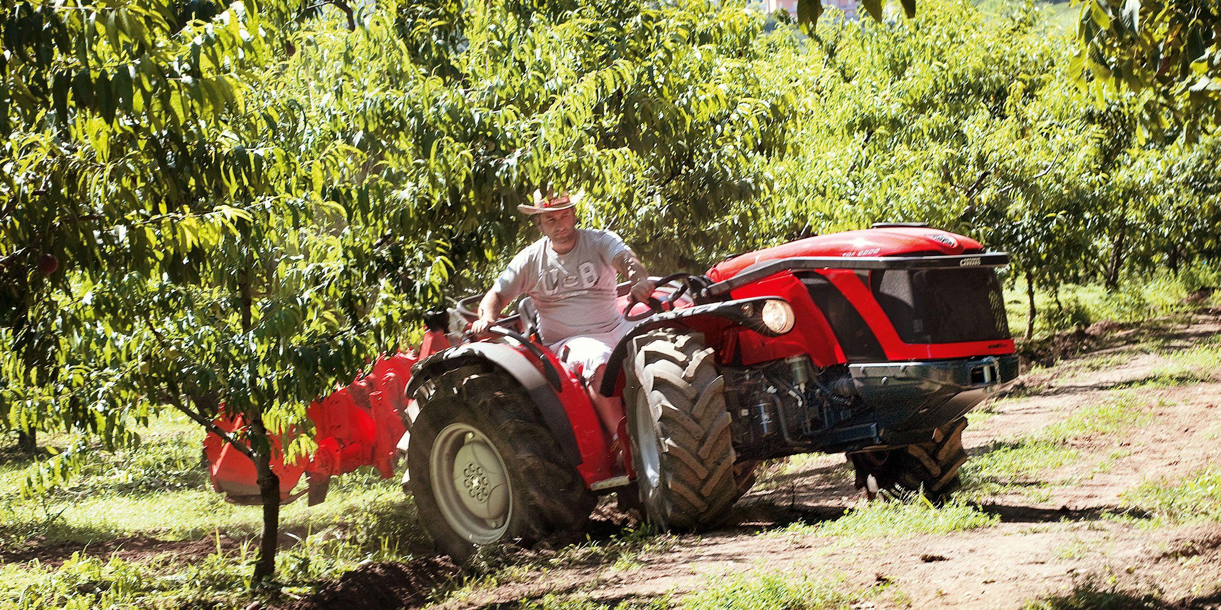 Antonio Carraro | Tractors | TGF Ergit S